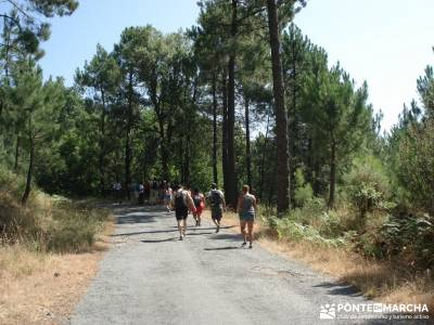 Pinares de Piedralaves;mochila trekking mochila senderismo ruta senderismo madrid